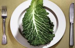 Obsesja na punkcie zdrowego odżywiania i stylu życia