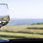 wino-ziolowe
