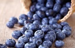 Borówki – poznaj właściwości tych niezwykłych owoców