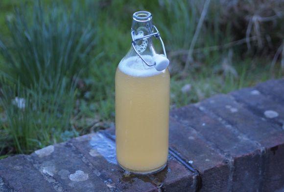 sok z brzozy